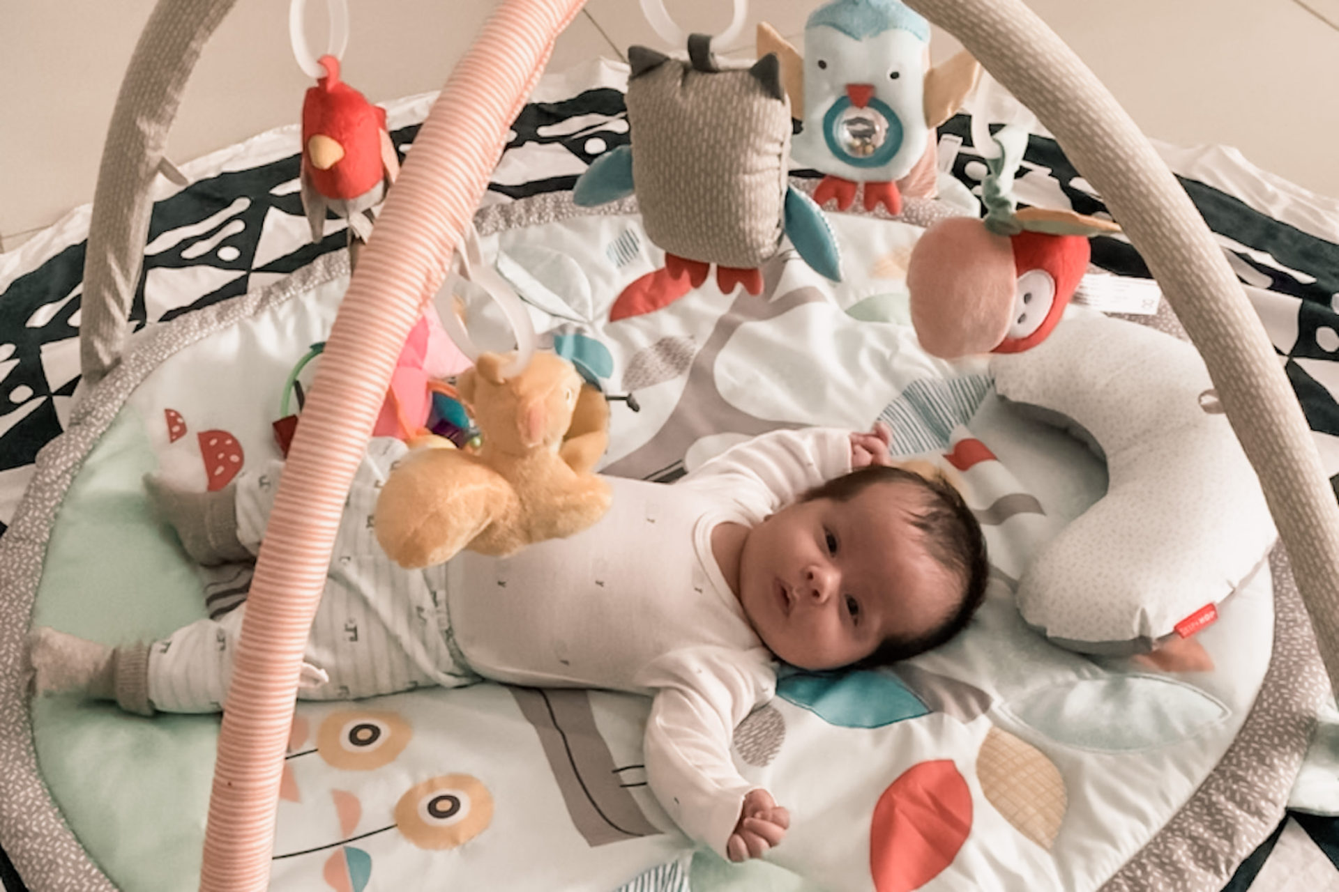 Baby playing in skip hop baby gym